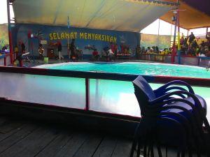 Atraksi Lumba-Lumba & Aneka Satwa Di Purwokerto : Pentas Yang Tak Pantas