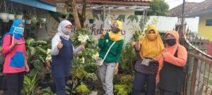 Panen Jentik, Sidak PSN Ke RT 03/16 Teluk Purwokerto