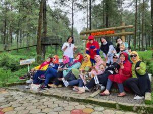 Hutan Pinus Limpakuwus Baturaden, Playgroundnya Asik Pengunjungnya Kini Dibatasi Ya..!!