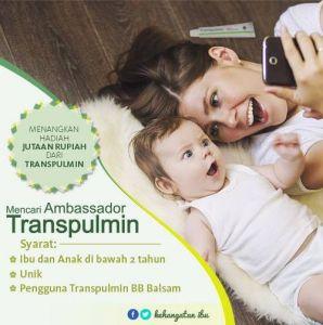 Dicari Ambassador Transpulmin, Berhadiah Jutaan Rupiah!
