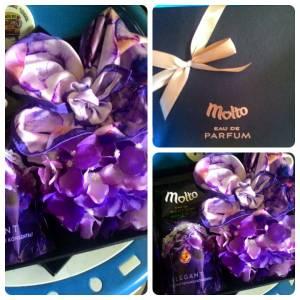 Hampers Molto : Hadiah Scarf Molto Parfum Prancis