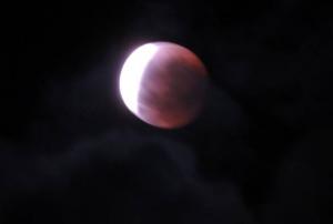Indahnya Menyaksikan Super Blue Blood Moon Secara Live